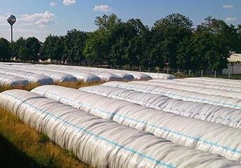 Kukuruzna silaža u AG BAG-u