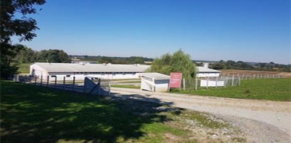 Poljoprivredno Gospodarski obrt Domagoj
