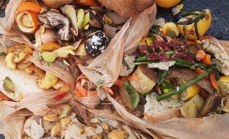 Odvojeno prikupljanje i uporaba biootpada u bioplinskom postrojenju – primjer dobre prakse